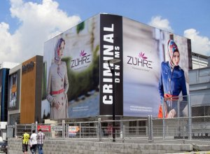 vinil_germe_tema_reklam